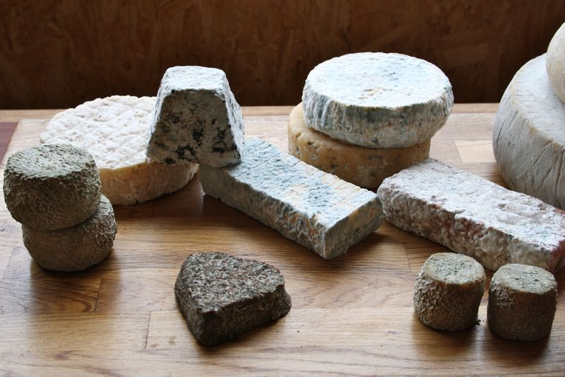 Selection of Cantagrullas Cheeses