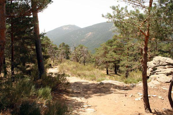 Hiking Cecerdilla
