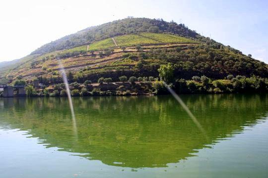 Pinhao Portugal