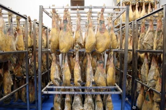 Ham factory Maskarada
