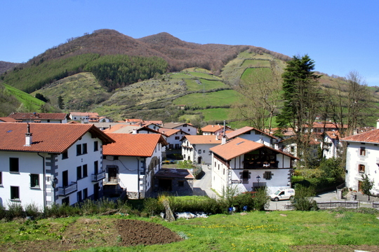 Green Navarra Spain