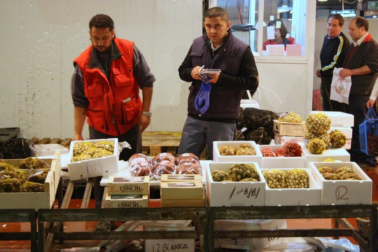 Visiting Mercamadrid: The Second Biggest Fish Market in the World