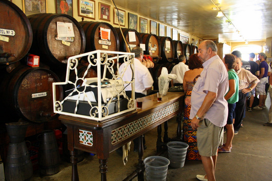 Malaga wine bar on Malaga tapas tour.