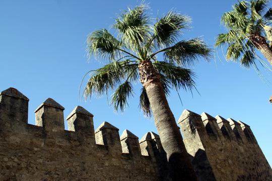 Fortress Vejer