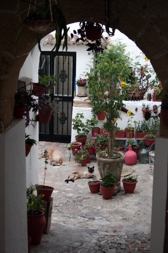 Patio Vejer