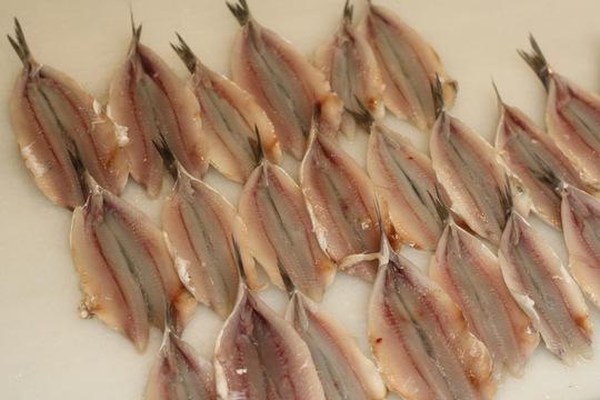 Malaga fish