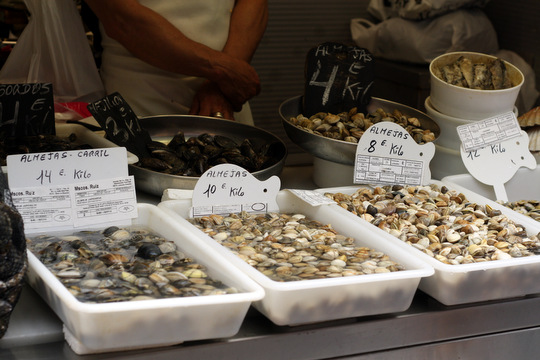 malaga clams
