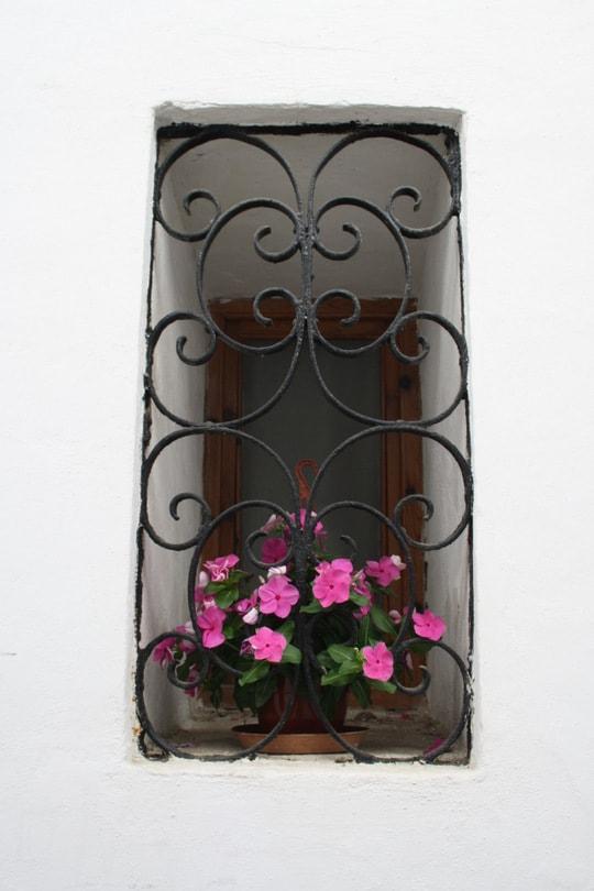 Cordoba window flowers