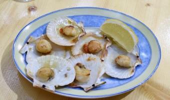 Best Bites in La Coruña