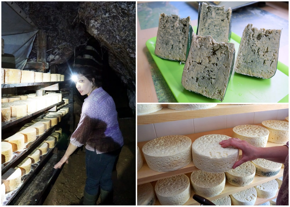 Visiting the Cabrales cheese caves.