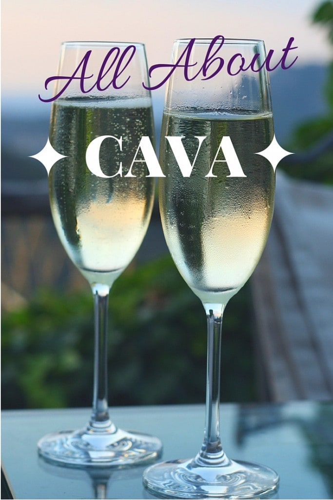 What is Spanish Cava? Is it any different from Champagne? If you're planing to buy Spanish bubbly, here are the tricks you need to know!
