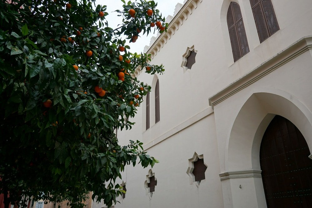 Corral del Rey Boutique Hotel in Seville