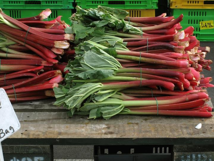 French rhubarb