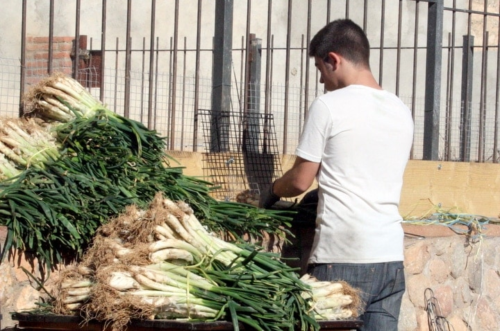 Traditional calçots in Barcelona