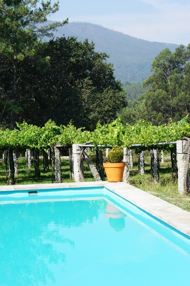 The gorgeous pool at Os Areeiros with views of the family vineyards.