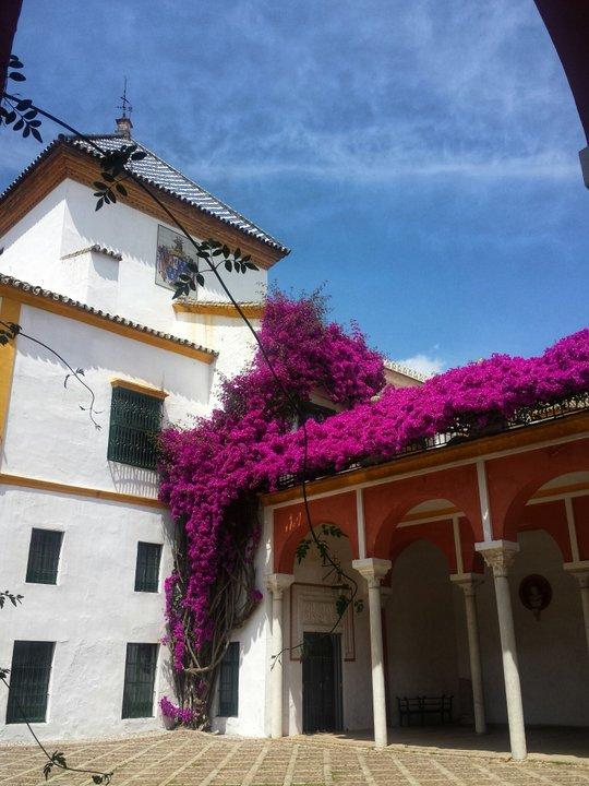 Seville palace on Seville Gourmet Tour