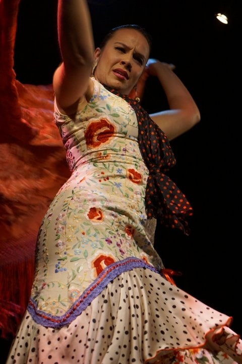 Flamenco tour with kids in Madrid