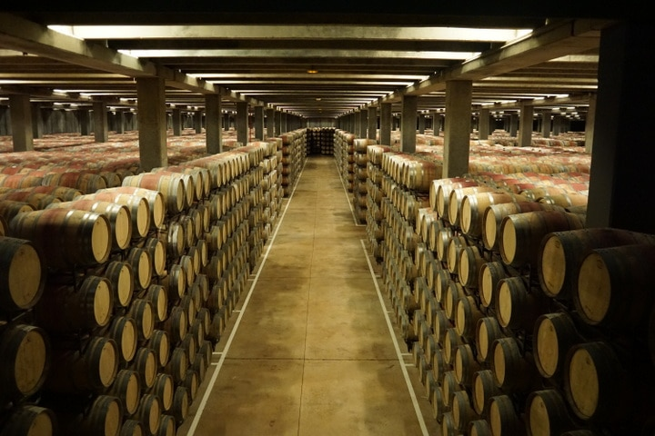 Best bodegas in La Rioja; Campo Viejo tour La Rioja; wine tours in La Rioja; barrel room