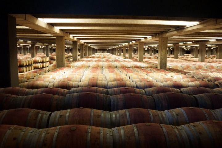 Best bodegas in La Rioja; Campo Viejo tour La Rioja; wine tours in La Rioja