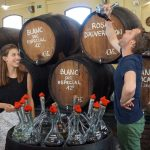 Excellent Barcelona Winery Tour: Farm-to-Table Wine & Cava Day Trip