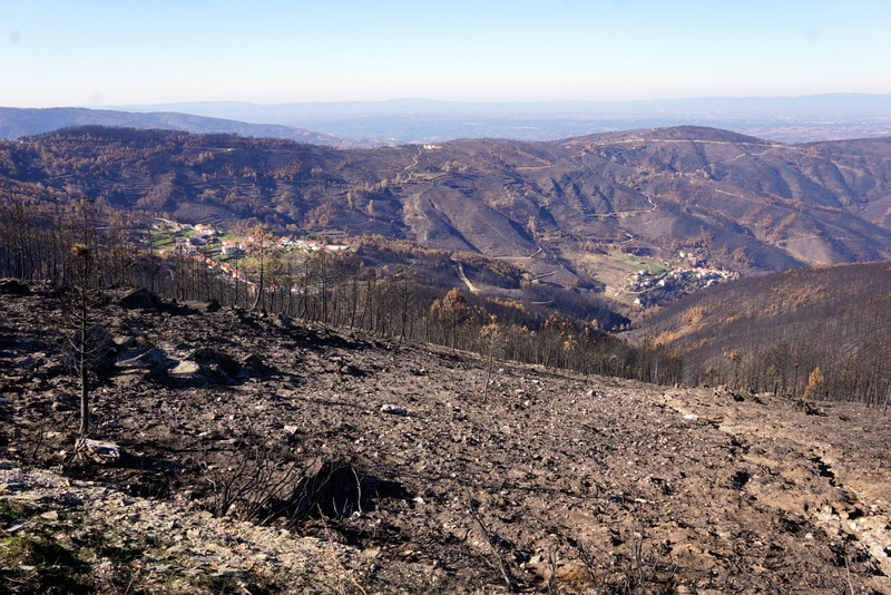 Central Portugal fires; visit central Portugal