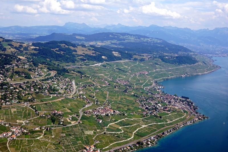 Lavaux vineyards Lausanne