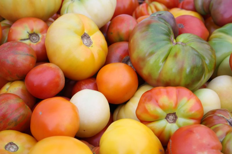 The Keys to Spanish Cooking: Tomatoes