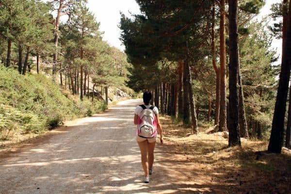 Hiking in Madrid: Cercedilla