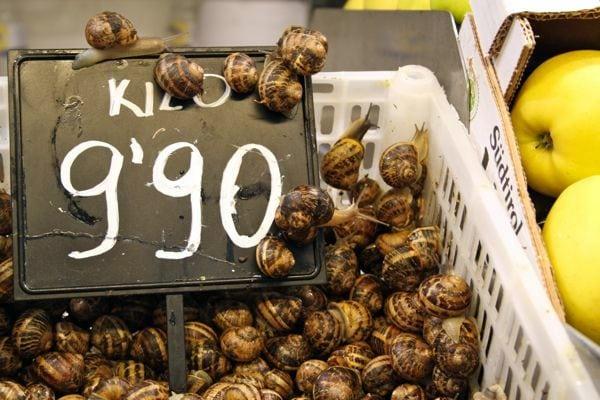 Snails Market