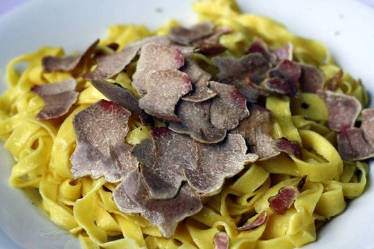 Homemade pasta with white truffles
