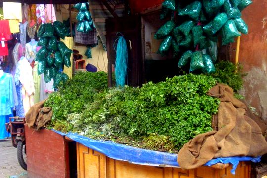 Pictures from Marrakesh: Mint for sale