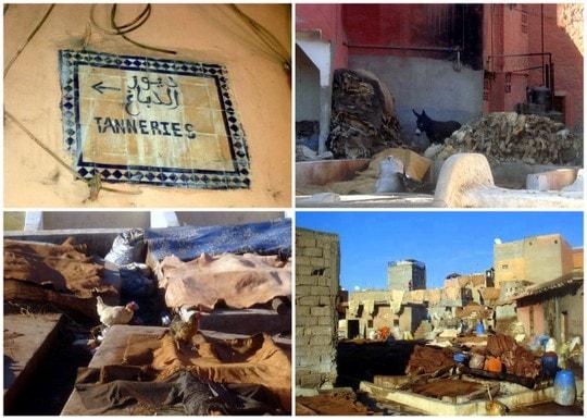 Marrakesh tanneries