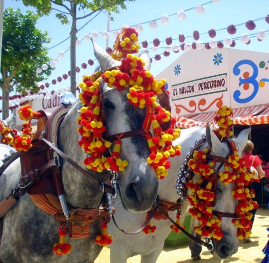 Colorful horses in El Puerto