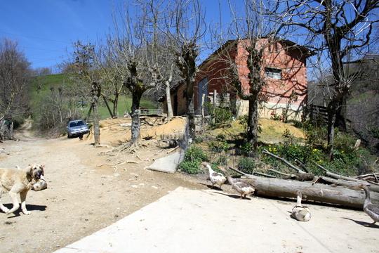 Farm in Navarra
