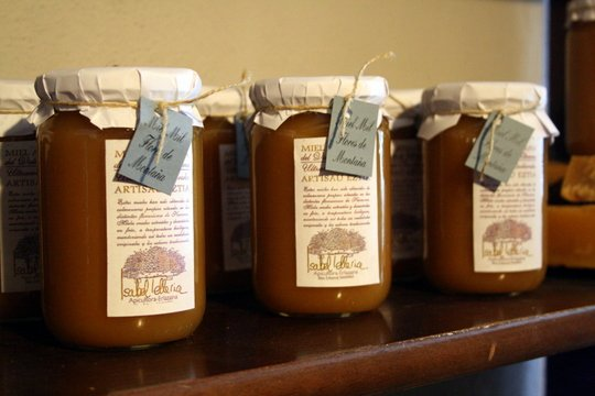 Navarra Spain honey museum