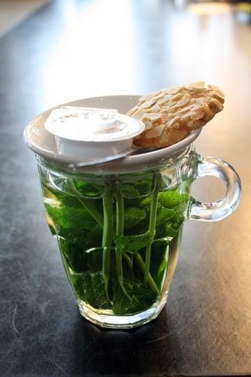 Mint Tea in Rotterdam