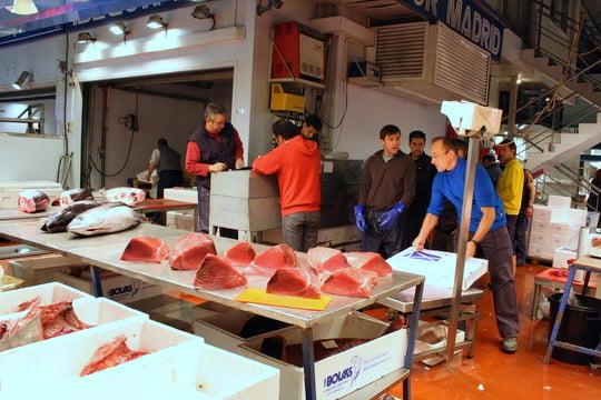Tuna at Mercamadrid