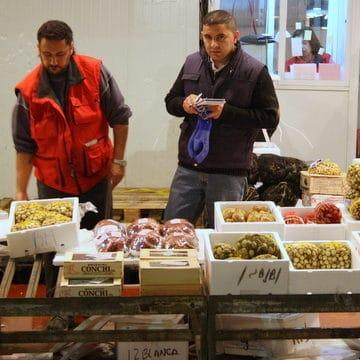 Mercamadrid fish market