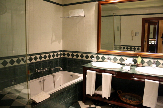 Elba Palace Golf Bathroom