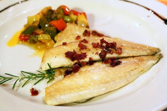 fuerteventura fish