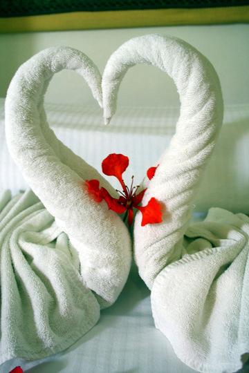 Towel swans.