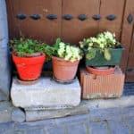Flowerpots in Leitza Navarra