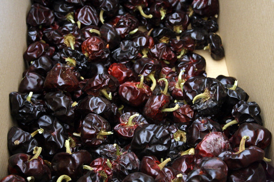 Ñora peppers, Murcian paprika