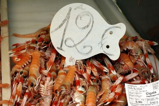 Super expensive seafood is a sure sign it's almost Christmas in Spain
