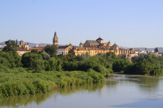 Visiting Cordoba in Summer