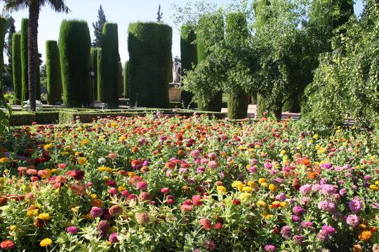 Cordoba gardens