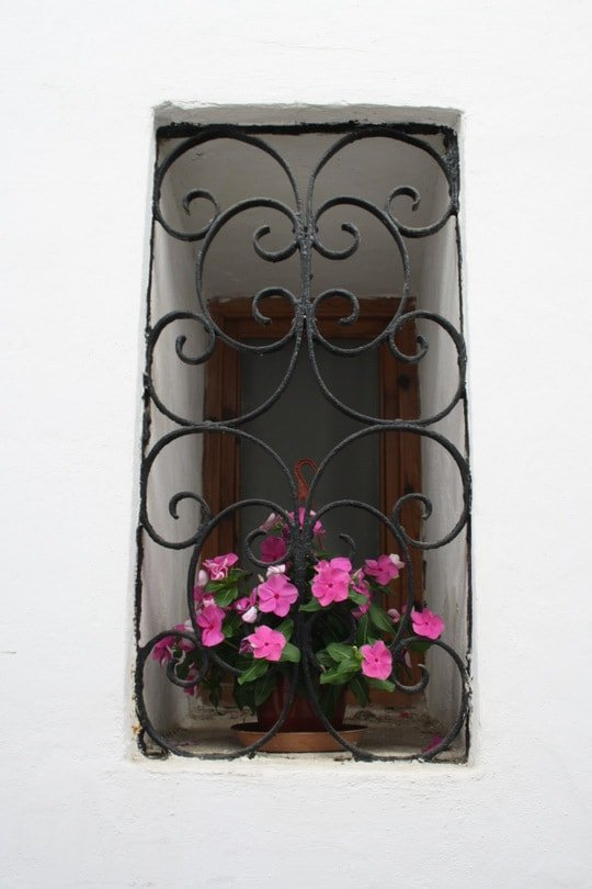 Cordoba window flowers