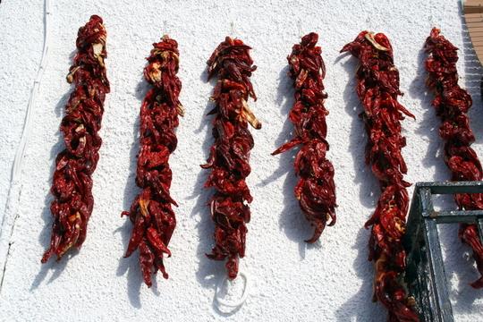 Food in Alpujarras Granada