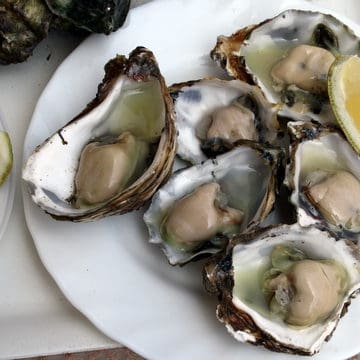 Spanish Oysters, Spanish seafood