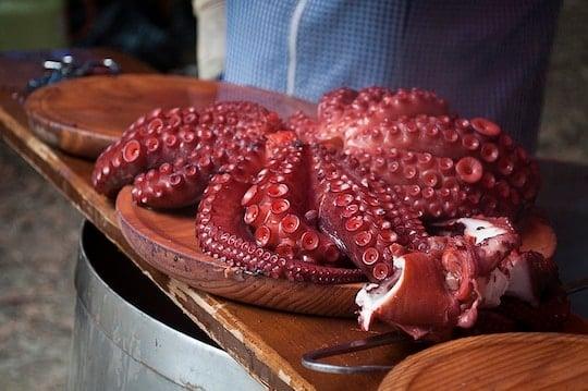 Galician octopus festival